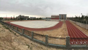 Full Pour EPDM Athletics Track Surfacing for Professional Playground pictures & photos