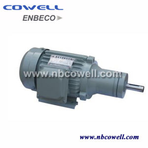 220V High Torque Low Rpm Three-Phase Electrical Motor pictures & photos