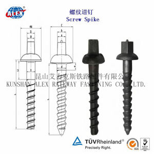 Screw Spike for Railway Sleeper (High Tension Screw Spike coach screw) pictures & photos