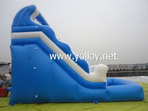 Inflatable Slide with Swimming Pool pictures & photos