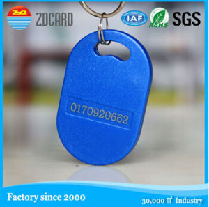 Customized Programmable RFID Key FOB pictures & photos