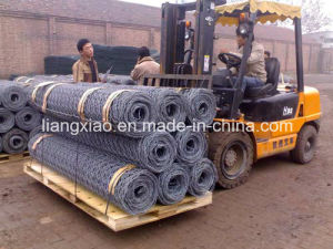 Supply Hot-Dipped Galvanized Gabion (HPZS4003) pictures & photos