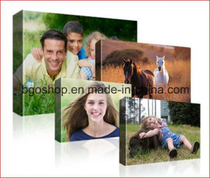 """Oil Painting Waterproof Fabric Cotton Canvas (16""""X20"""" 1.9cm) pictures & photos"""