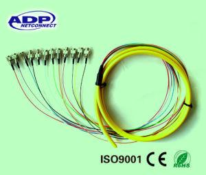 12 Cores Fiber Pigtail Fiber Optic Patch Cord Cable (SM, FC/UPC) pictures & photos