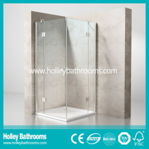 Hinger Door Modern Fashion Double Doors Selling Simple Shower Cubicle (SE710C)