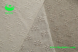 Hemp Cotton Sofa Fabric (BS6033) pictures & photos