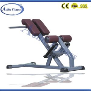 Hyper Extension Bench/Rome Chair/Back Extension pictures & photos