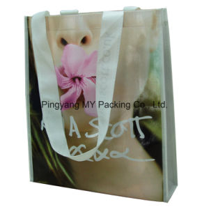 Professional Manufacturer Custom Promotional Shopping Handled Laminated Non-Woven Bag pictures & photos