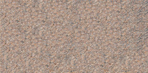 300*600 Matt Rustic, Interior Tile, Wall Tile (PM36505) pictures & photos