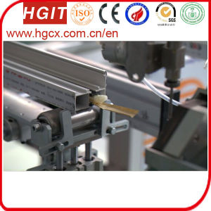Cavity Strip Feeding Foam Machine by Paper pictures & photos