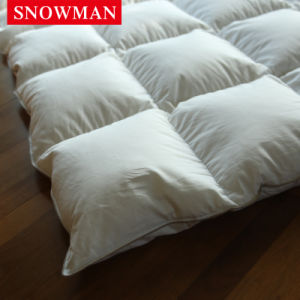 Luxury King Size White Goose Down Comforter pictures & photos