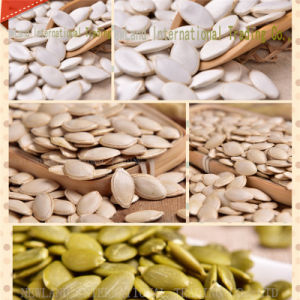 Chinese Pumpkin Seeds and Kernels with Best Quality and Good Price for Buyers pictures & photos