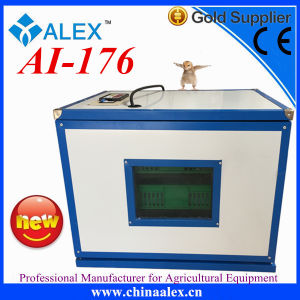 Most Popular Full Automatic Egg Incubator for Poultry