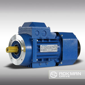 AC Motor with Brake From Aokman Drive pictures & photos