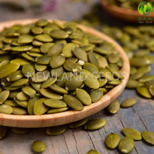 Chinese Green Shine Skin Pumpkin Seeds Kernels AA to America