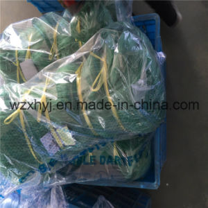 "0.45mmx6""X200ydsx80md Nylon Monofilament Fishing Net pictures & photos"