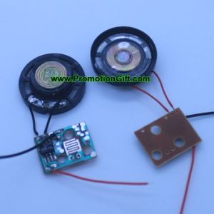Music Recording Sound Module pictures & photos
