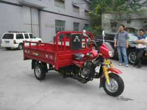 China Price Goods Transport 3 Wheel Motorbike pictures & photos