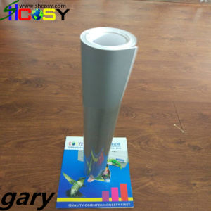 PVC Self Adhesive Color Cutting Vinyl for Cutting Plotter pictures & photos