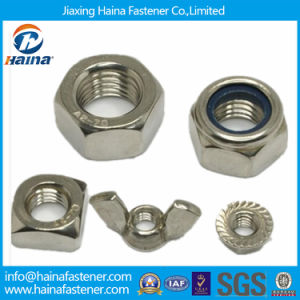 Stainless Steel Hex Nut, Square Nut, Wing Nut, Nylon Locknut pictures & photos