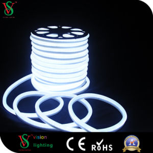 Christmas Indoor Outdoor Decoration LED Neon Tube pictures & photos