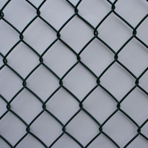 China Wholesaler of PVC Chain Link Fence Low Prcie pictures & photos