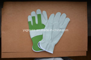 Leather Garden Glove-Pig Leather Glove-Weight Lifting Glove pictures & photos