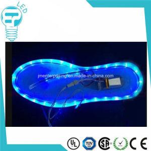 Wholesale LED Shoelaces colorful Shoes LED Light up LED Shoelace pictures & photos