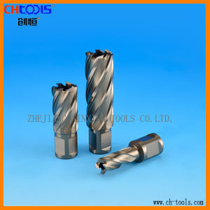 HSS Core Drill Bit with Weldon Shank. (DNHX) pictures & photos