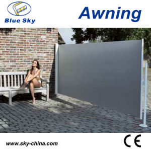 Outdoor Side Folding Screen Awning (B700) pictures & photos