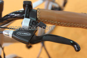 20′′ Shock Absorber Folding Bicycle Folded Bike Foldable E-Bicycle Customized Painting Shimano pictures & photos