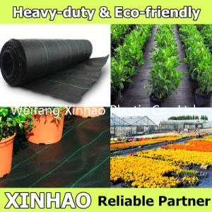 Ground Cover and Weed Barrier with Heavy Duty pictures & photos