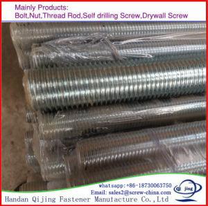 Carbon Steel Q235 High Stength Gr8.8 DIN975 Galvanized Threaded Rod pictures & photos