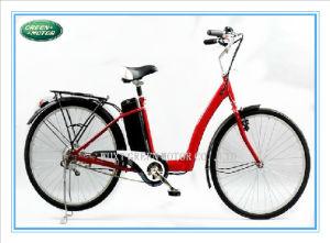 250W/24V/Brushless Electric Bike, Electric Bicycle, E-Bike, E-Bicycle (GE55)