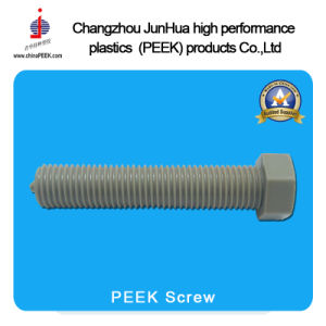 Pollution Peek Screws and Peek Nuts pictures & photos