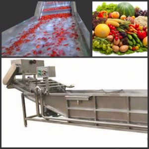 Best Quality Stainless Steel Commercial Vegetable Washing Machine pictures & photos