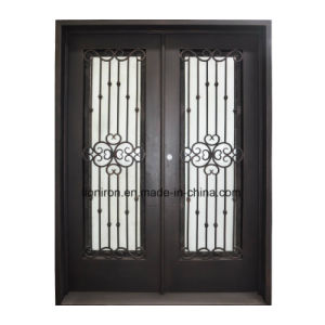 Custom Whole Sale Wrought Iron and Glass Entry Doors pictures & photos
