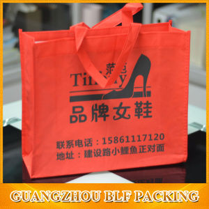(BLF-PB048) Non Woven Shoe Bag pictures & photos