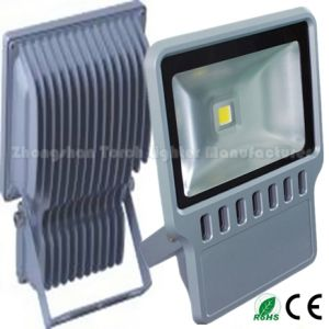 100W IP65 Pure White LED Floodlight with Competive Price