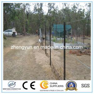 Australia Black Galvanized Steel Y Type Star Fence Post pictures & photos