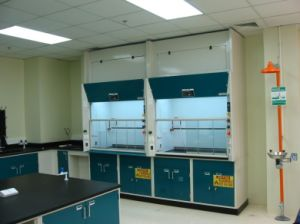 2014 High Quality All Steel Lab Fume Hood with CE SGS Certification pictures & photos