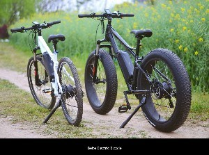 Fat Tire Cheap Electric E-Bicycle Mountain Folding Big Power