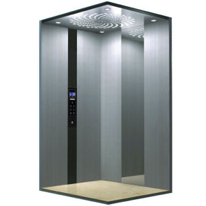 Mini Home Lift with Hairline Stainless Steel pictures & photos
