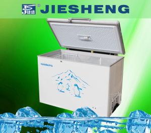 Chest Freezer with Top Open Door Deep Freezer (BDBC-300) pictures & photos