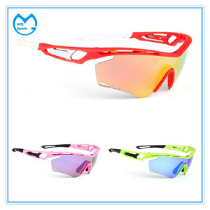 Adult PC Lens Sports Glasses Cycling Sunglasses pictures & photos