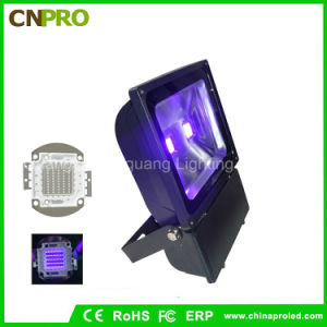 100watt Ultra Violet IP65 UV LED Flood Light with Us Plug for America pictures & photos