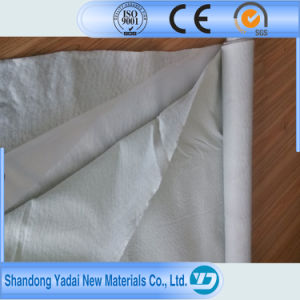 Composite Geomembrane with High Strength Reinforced Geotextile pictures & photos