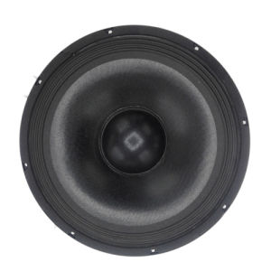 PA-12 15 XX NP Speaker Drivers pictures & photos