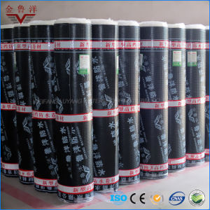 Sbs Modified Bitumen Waterproof Membrane, Self Adhesive Building Material pictures & photos