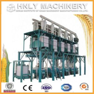 Turnkey 100t/D Complete Corn Flour Mill Project pictures & photos